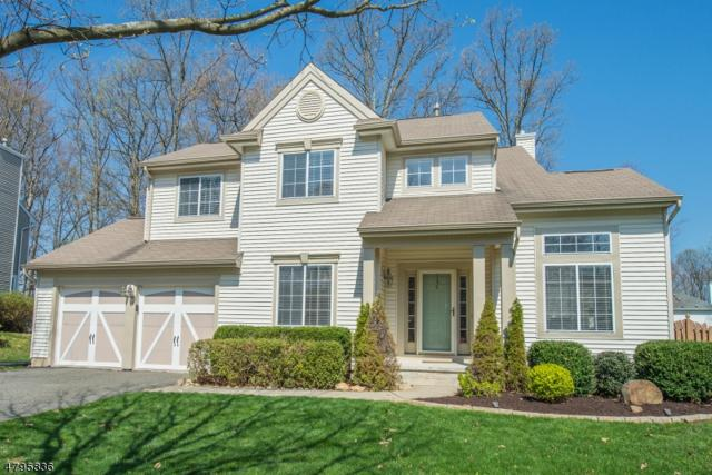 6 Crestwood Cir, Mount Olive Twp., NJ 07828 (MLS #3467610) :: The Sue Adler Team