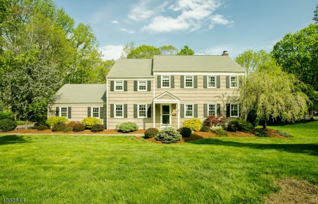 33 Mockingbird Rd, Allamuchy Twp., NJ 07840 (MLS #3469254) :: The Sue Adler Team