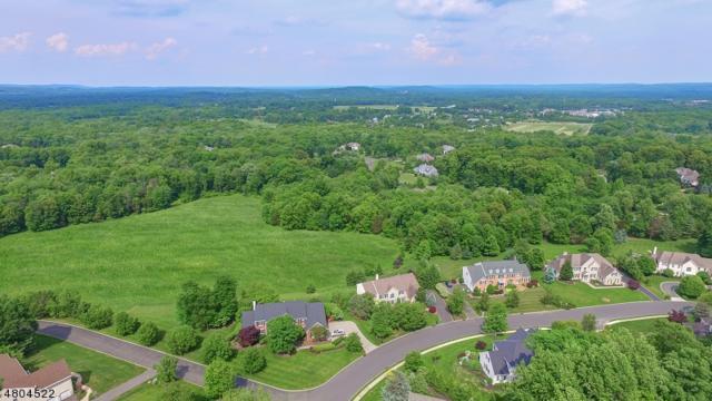 62 Independence Dr, Bernards Twp., NJ 07920 (MLS #3473809) :: The Dekanski Home Selling Team