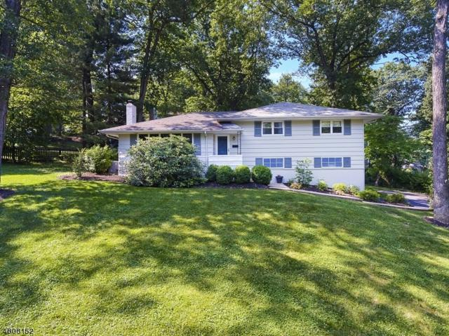 142 Hillside Ave, Berkeley Heights Twp., NJ 07922 (MLS #3474817) :: SR Real Estate Group