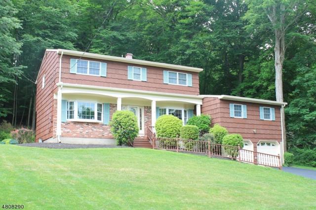58 Joyce Drive, Roxbury Twp., NJ 07876 (MLS #3475286) :: The Dekanski Home Selling Team