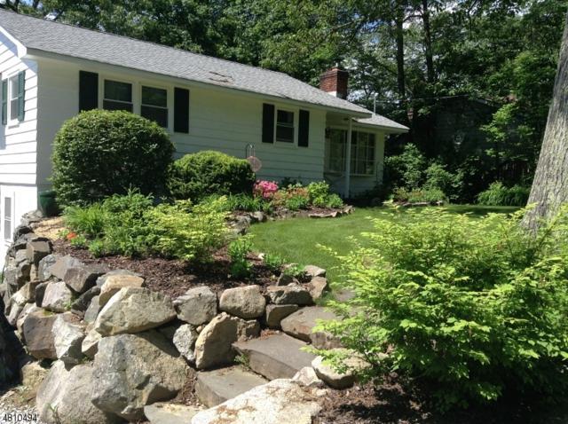 507 Pocasset Rd, Vernon Twp., NJ 07422 (MLS #3476552) :: William Raveis Baer & McIntosh