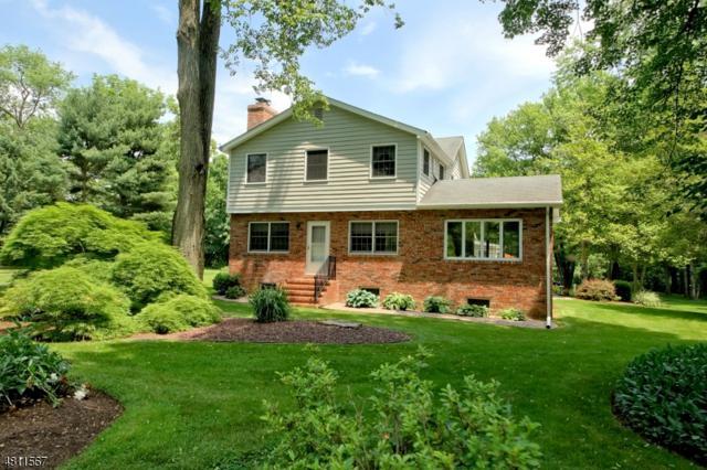 81 Laurel Ave, Franklin Twp., NJ 08528 (MLS #3477568) :: The Dekanski Home Selling Team
