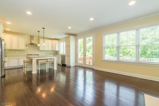 10 Park Place, Mountain Lakes Boro, NJ 07046 (MLS #3478015) :: RE/MAX First Choice Realtors