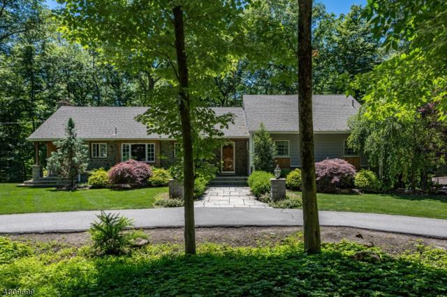 513 Pepperidge Tree Ln, Kinnelon Boro, NJ 07405 (MLS #3479635) :: William Raveis Baer & McIntosh