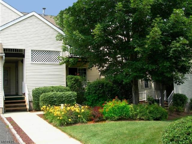 332 Potomac Dr, Bernards Twp., NJ 07920 (MLS #3480233) :: The Sue Adler Team