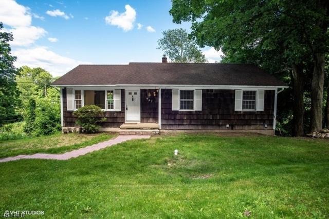 447 Mt Hope Rd, Rockaway Twp., NJ 07885 (MLS #3480296) :: William Raveis Baer & McIntosh
