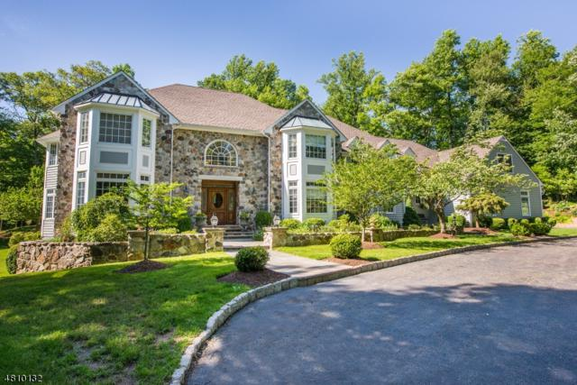 59 Gaston Rd, Morris Twp., NJ 07960 (MLS #3480315) :: SR Real Estate Group