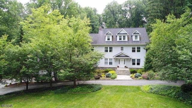 20 N Briarcliff Rd, Mountain Lakes Boro, NJ 07046 (MLS #3481412) :: William Raveis Baer & McIntosh