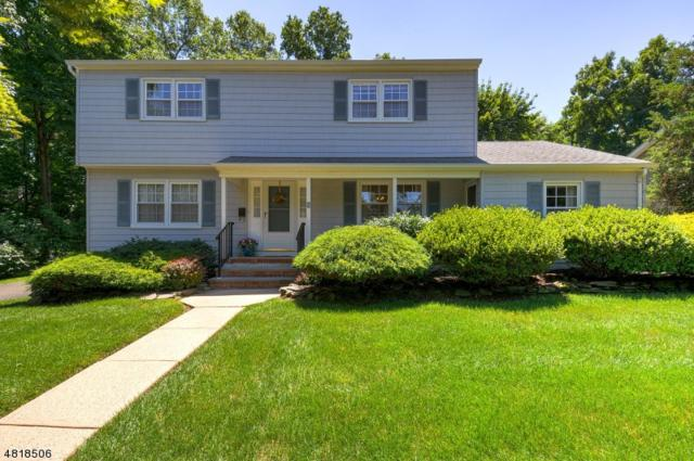 3 Arlyne Dr, Somerville Boro, NJ 08876 (MLS #3484071) :: RE/MAX First Choice Realtors