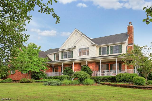 13 Daltrui Dr, Hillsborough Twp., NJ 08844 (MLS #3484962) :: SR Real Estate Group
