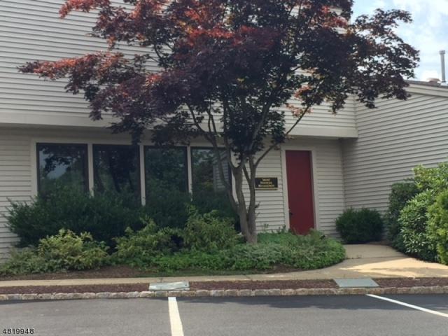 5 Cold Hill Rd, Mendham Boro, NJ 07945 (MLS #3485419) :: RE/MAX First Choice Realtors