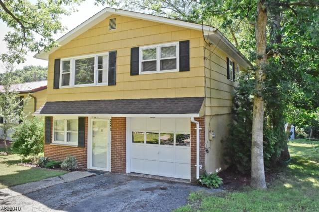 221 Flora Ave, Hopatcong Boro, NJ 07874 (MLS #3487726) :: William Raveis Baer & McIntosh