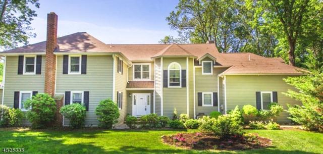 247 Rock Ln, Mountain Lakes Boro, NJ 07046 (MLS #3490410) :: SR Real Estate Group