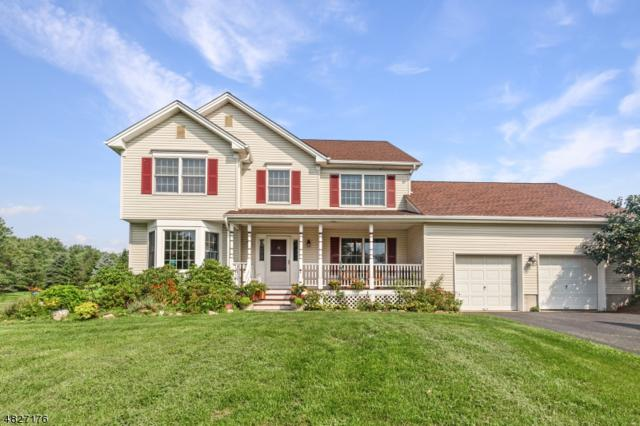 18 Blackberry Pl, Washington Twp., NJ 07853 (MLS #3492136) :: SR Real Estate Group