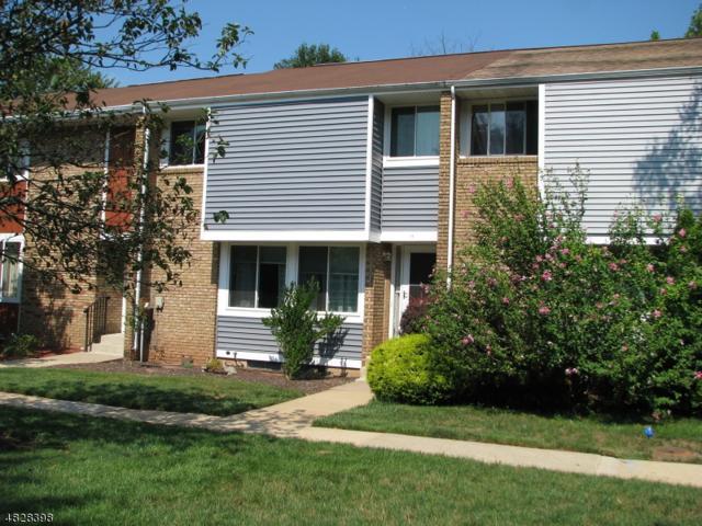11 Alpine Ct, Hillsborough Twp., NJ 08844 (MLS #3493245) :: The Sue Adler Team