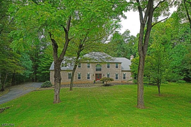 14 Woodfield Rd, Green Twp., NJ 07821 (MLS #3496356) :: William Raveis Baer & McIntosh