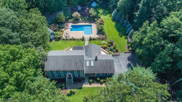 6 Hilltop Rd, Kinnelon Boro, NJ 07405 (MLS #3496837) :: SR Real Estate Group