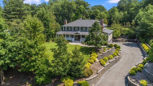 17 Farbrook Drive, Millburn Twp., NJ 07078 (MLS #3497161) :: SR Real Estate Group