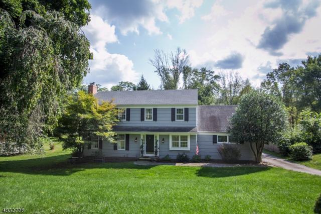 32 W Main St, Mendham Twp., NJ 07926 (MLS #3497267) :: SR Real Estate Group