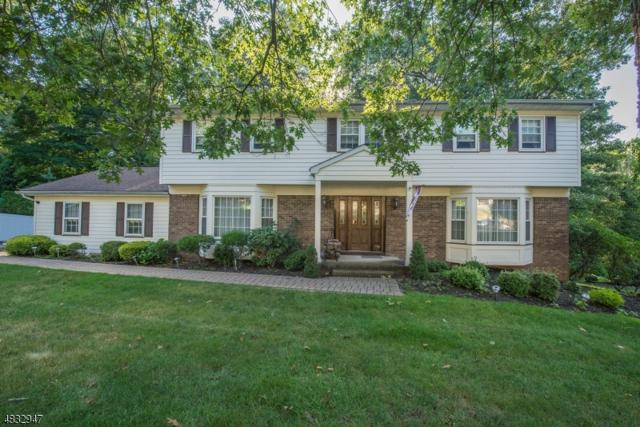 39 Birch Run Ave, Denville Twp., NJ 07834 (MLS #3497454) :: William Raveis Baer & McIntosh