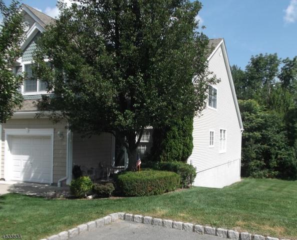 10 Spring Hollow Rd, Wantage Twp., NJ 07461 (MLS #3498120) :: Pina Nazario