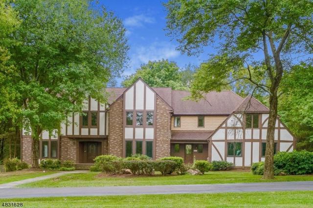 247 Douglas Road, Bernards Twp., NJ 07920 (MLS #3500122) :: SR Real Estate Group