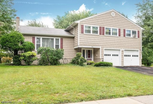 3 Joyce Drive, Roxbury Twp., NJ 07876 (MLS #3500421) :: The Sue Adler Team