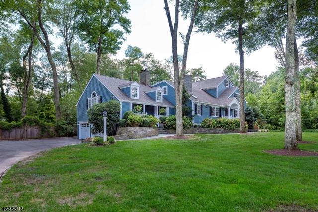 33 Lees Hill Rd, Harding Twp., NJ 07976 (MLS #3500565) :: SR Real Estate Group