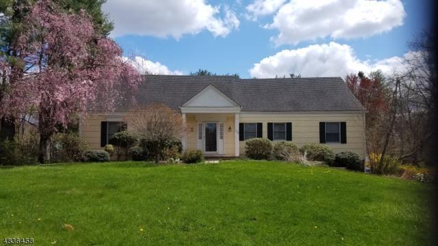 1364 Tullo Rd, Bridgewater Twp., NJ 08836 (MLS #3500646) :: SR Real Estate Group