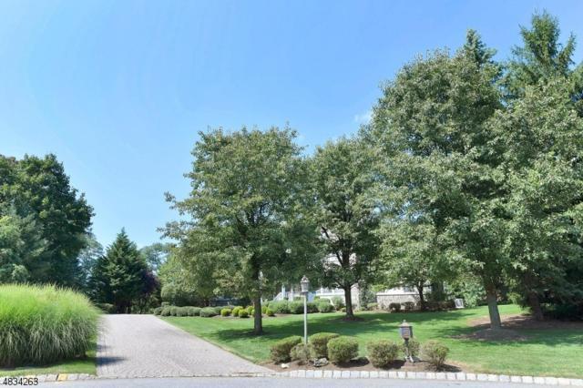 7 Whispering Ivy Path, Mendham Boro, NJ 07945 (MLS #3501077) :: William Raveis Baer & McIntosh