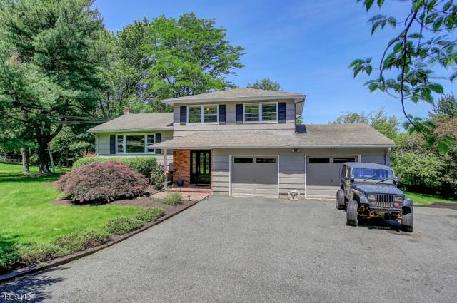 14 Smith Rd, Denville Twp., NJ 07834 (MLS #3502492) :: RE/MAX First Choice Realtors