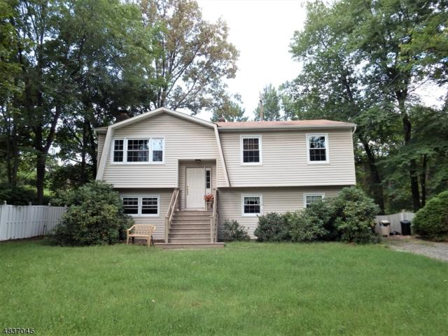21 Hall Ave, Denville Twp., NJ 07834 (MLS #3502868) :: RE/MAX First Choice Realtors
