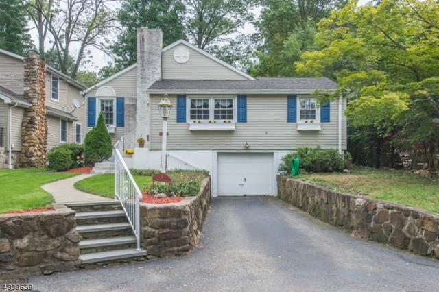 4 Elmwood Ter, Wayne Twp., NJ 07470 (MLS #3502870) :: SR Real Estate Group