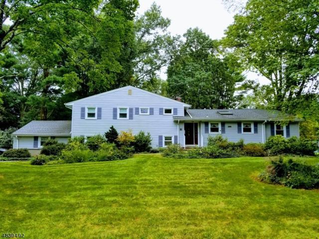 51 Circle Dr, Long Hill Twp., NJ 07946 (MLS #3503444) :: The Sue Adler Team