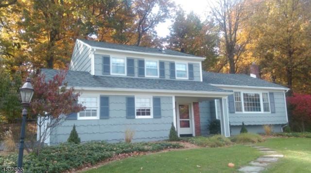 1619 Rising Way, Westfield Town, NJ 07090 (MLS #3503762) :: SR Real Estate Group