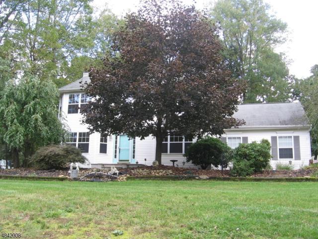 33 Autumn Dr, Mine Hill Twp., NJ 07803 (MLS #3507101) :: The Sue Adler Team