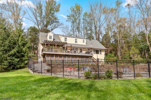 7 Ridge Rd, Peapack Gladstone Boro, NJ 07934 (MLS #3507589) :: Coldwell Banker Residential Brokerage