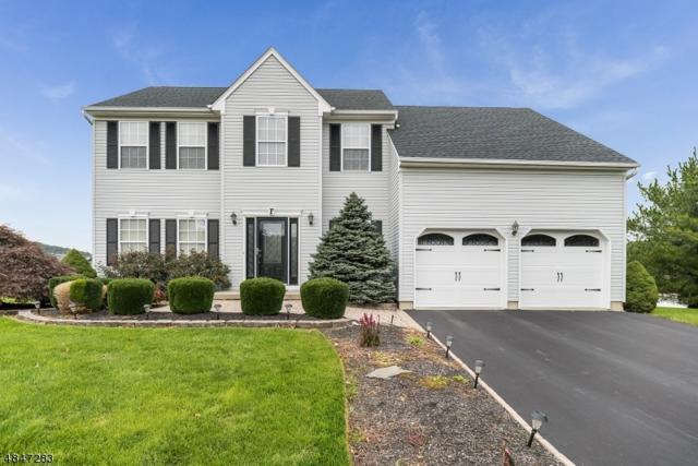 20 Robeson Rdg, Oxford Twp., NJ 07863 (#3510819) :: Jason Freeby Group at Keller Williams Real Estate