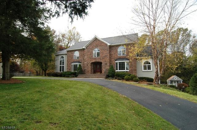 20 Farmbrook Rd, Sparta Twp., NJ 07871 (MLS #3513543) :: William Raveis Baer & McIntosh