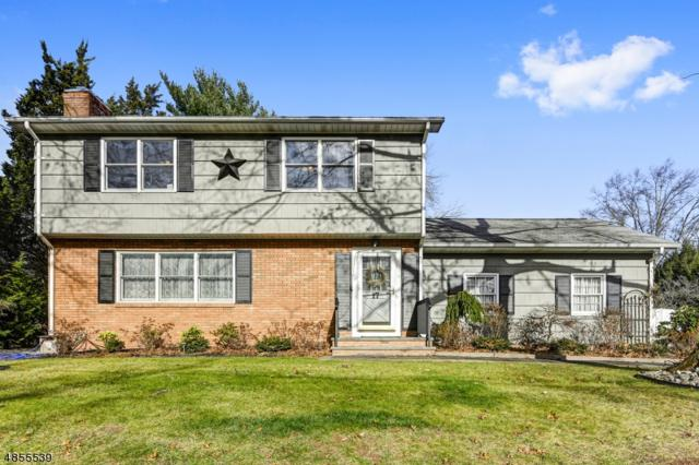 17 Beardslee Rd, Millstone Boro, NJ 08844 (MLS #3518499) :: Vendrell Home Selling Team