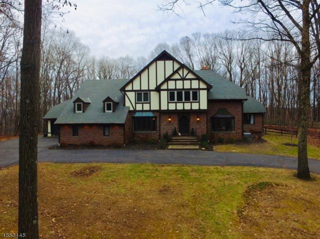 46 Twin Brooks Trl, Chester Twp., NJ 07930 (MLS #3519652) :: William Raveis Baer & McIntosh