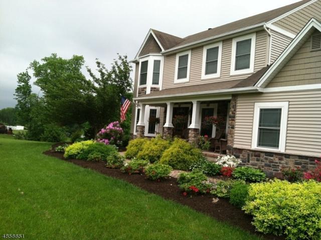 10 Rymon Rd, Washington Twp., NJ 07882 (#3520710) :: Jason Freeby Group at Keller Williams Real Estate