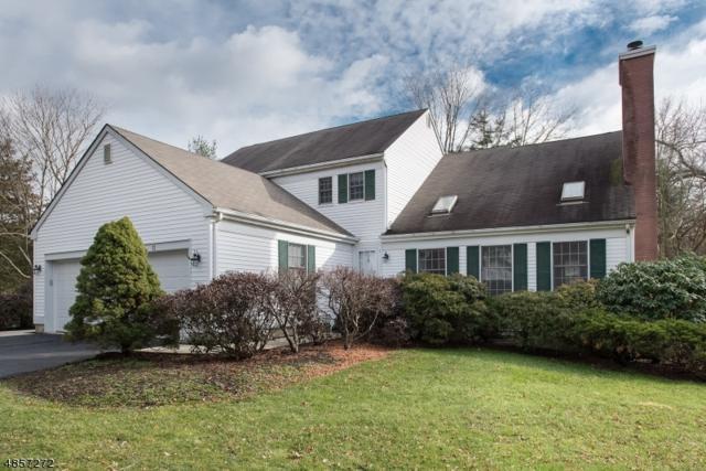 11 Hampton Ct, Bernards Twp., NJ 07920 (MLS #3520804) :: Coldwell Banker Residential Brokerage