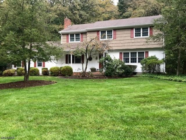 15 Pontiac Dr, Wayne Twp., NJ 07470 (MLS #3521494) :: William Raveis Baer & McIntosh