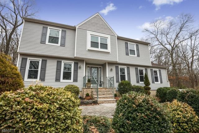 24 Park Ave, Randolph Twp., NJ 07869 (MLS #3523016) :: Coldwell Banker Residential Brokerage