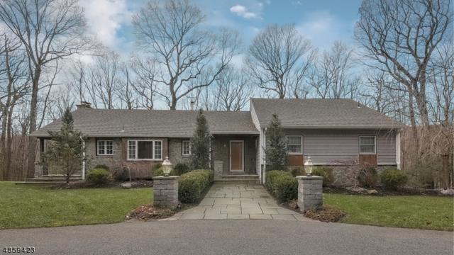513 Pepperidge Tree Ln, Kinnelon Boro, NJ 07405 (MLS #3523109) :: SR Real Estate Group