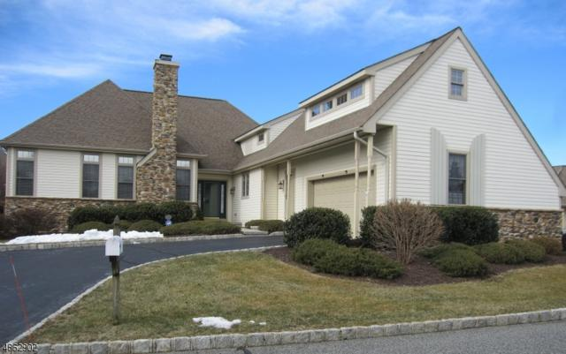 6 Seminole Ct, Fredon Twp., NJ 07860 (MLS #3526885) :: Coldwell Banker Residential Brokerage
