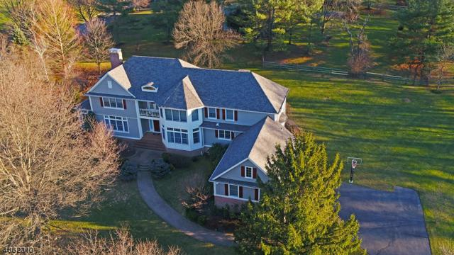 1 Cricket Ln, Chester Twp., NJ 07930 (MLS #3527623) :: Coldwell Banker Residential Brokerage