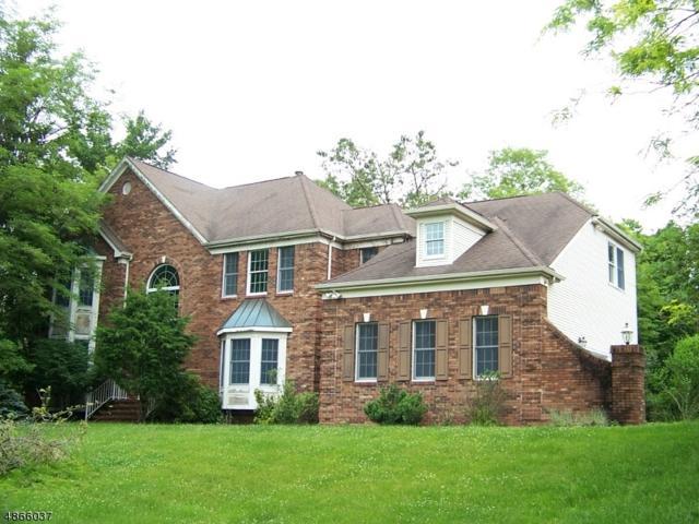 14 Oakridge Rd, Clinton Twp., NJ 08801 (MLS #3527833) :: Weichert Realtors